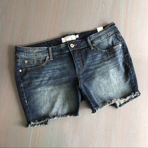 New Torrid Blue Jean Shorts 16
